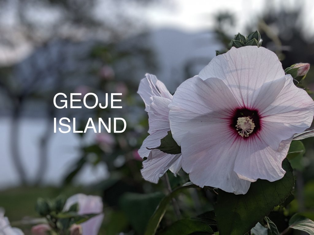 Geoje Island header